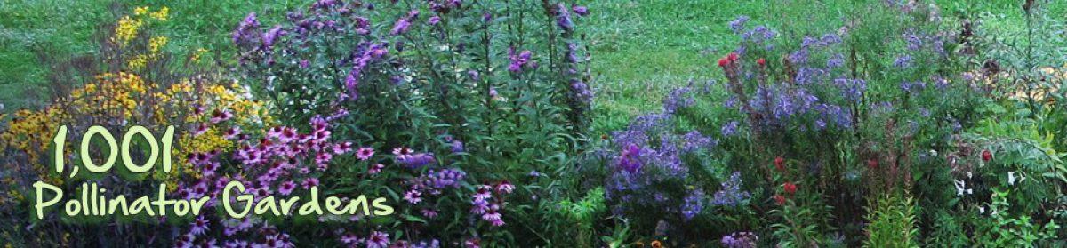 1001 Pollinator Gardens